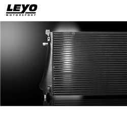 Cupra Ateca 2,0TFSi Leyo Motorsport Intercooler kit